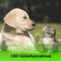 CBD háziállatoknak, kiskedvenceknek